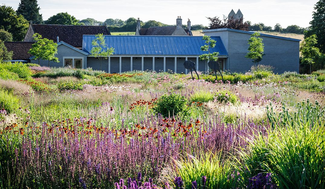 Hauser and Wirth Building behind flower meadow