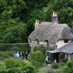 Be a Cultural Ambassador for Dorset