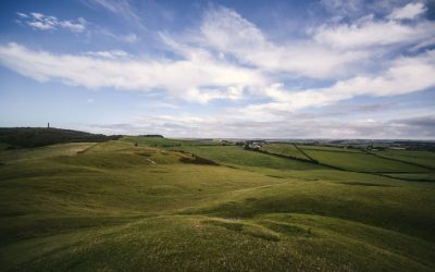 Landscape and arts video tender for South Dorset Ridgeway