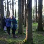 Developing Dorset's Rural Arts Ecology – a review