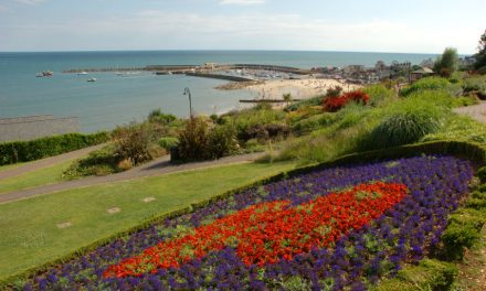 Emerging Dorset based curator sought for Lyme Regis Sculpture Trail