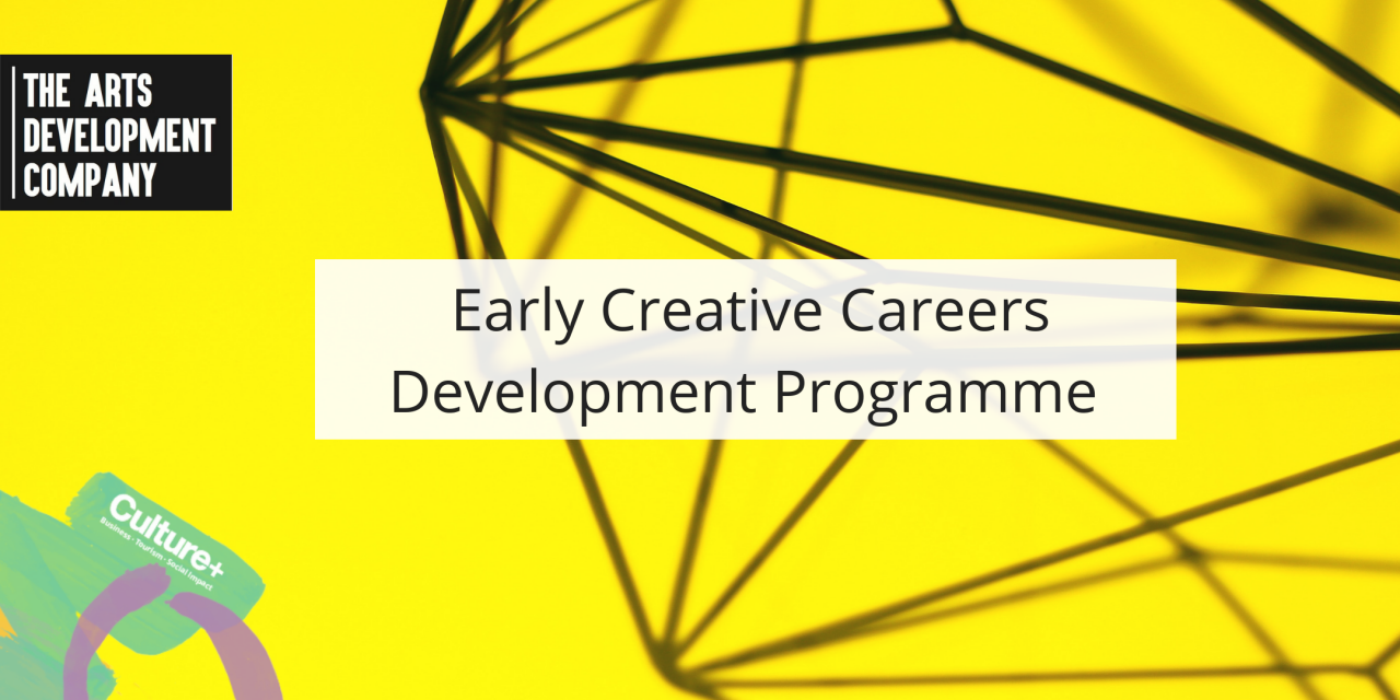 Call Out for Early Career Development Programme