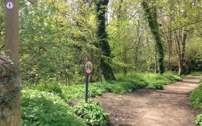 Open Call: River Lim Path Improvement Project, Lyme Regis